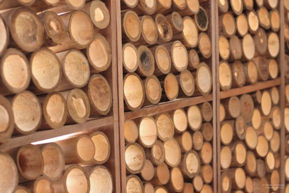 Facade detail, bamboo bubbles