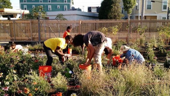Community planting day, planned and led by students.